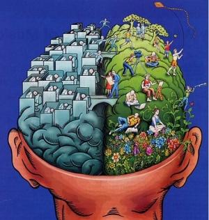 brain-hemispheres-activity